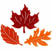 Loof, bladeren en paddestoelen