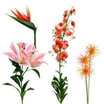 Exotische bloemen