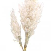Pampagras wit crème kunstgras decoratie 82cm