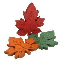 Kleurrijk esdoornblad voor verspreiding 3.5cm 72p