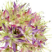 Allium licht violet L76cm