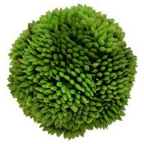 Alliumbal 5cm groen 4st