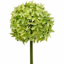Sierui Allium, zijden bloem, kunstbal prei groen Ø20cm L72cm