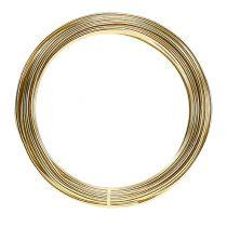 Aluminiumdraad 2 mm 100 g goud
