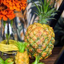 Ananas mini kunst 20cm