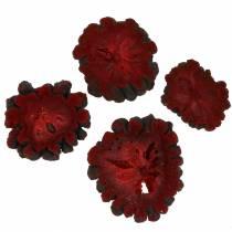 Decoratieve fruitschijven Ata fruit rood 1kg