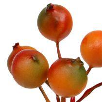 Bessenpluk sinaasappel 12 bundels