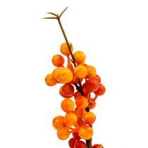 Bessentak oranje L 30cm 12st