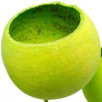 Bell Cup op een Stokje Groene Gedroogde Exoten 15st