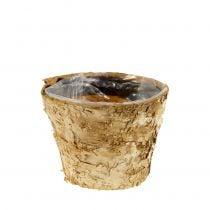 Berken pot Ø12cm H10cm