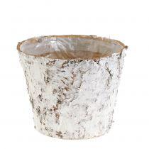 Pot met witte berk Ø15cm H12,5cm