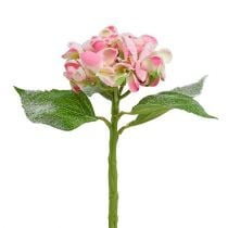Hortensia roze gesneeuwd 33cm 4st