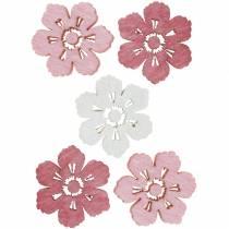 Verspreide kersenbloesems, lentebloemen, tafeldecoraties, houten bloemen om 144St