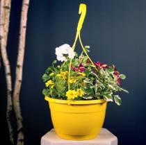 Bloemen hangmand 25cm paars