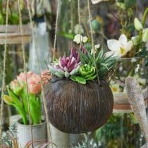 Hangmand met kunstmatige vetplanten L65cm Ø16cm