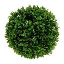Buxus bol Ø20cm groen