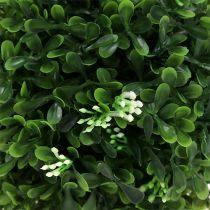 Buxus bal groen Ø18cm 1 st