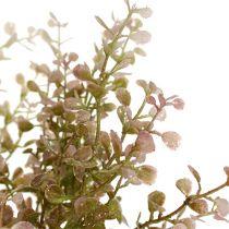 Buxus tak roze, roze met mica 32cm