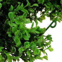 Buxus slinger groen L170cm