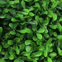 Buxus bal groen Ø55cm