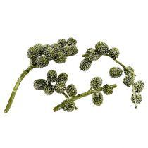 Casurina kegels groen, gewaxt 110 g