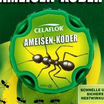 Celaflor mierenaas 2 stuks