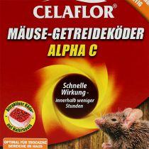 Celaflor Muizen Granen Killer 100g