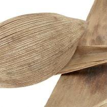 Kokosnootschalen gebleekt 25st