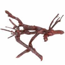 Dekoast curry bush rood gewassen 500g