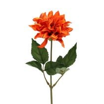Dahlia Oranje 28cm 4st
