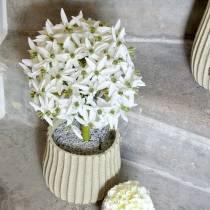 Sierbloem Allium, kunstbal prei, sierui wit Ø20cm L72cm