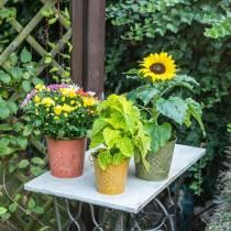 Decoratieve emmer fruit geel, oranje, groen gewassen Ø12.5cm H12cm set van 3