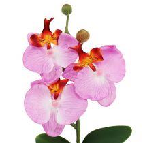 Decoratieve orchidee in een roze pot H29cm