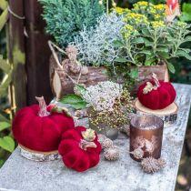 Deco pompoen rood herfstdecoratie polyresin 15×12cm
