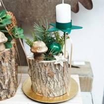 Decoratieve paddestoel hout natuur 5cm 6st