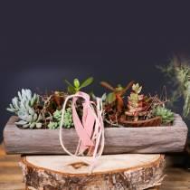 Decoratieve schaal Paulownia hout 49cm x 14cm H7cm