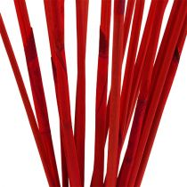 Decoratieve stokjes, Elephant Reed Red 20st
