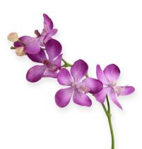 Orchidee paars 38cm