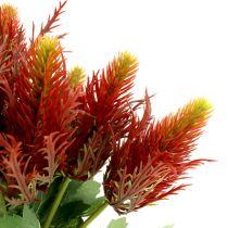 Distel rood-groen 20cm 12st