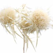 Gedroogde bloem disteltakje gebleekt 80g