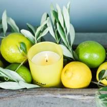 Geurkaars in een glas citroen en basilicum Ø7cm