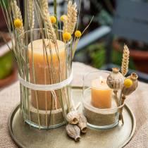 Gekleurde kaarsen Honingkleuren Verschillende maten