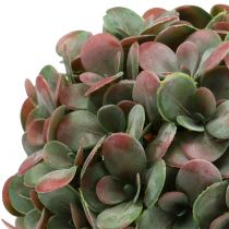 Echeveria-bal kunstmatig groen, rood Ø22cm