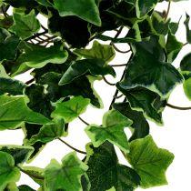 Klimophanger wit-groen 70cm