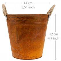 Plantenpot, herfstdecoratie, metalen schaal met patina Ø14cm H12cm