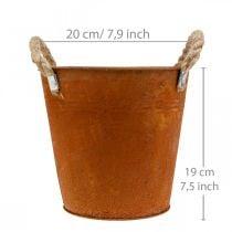 Sierpot met handvatten, herfstdecoratie, metalen schaal roestvrij staal Ø20cm H19cm