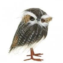 Uil om te versieren, herfst, decoratieve vogel, bosdecoratie H21cm