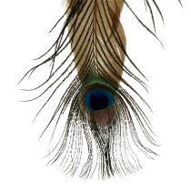 Veerhanger pauwenveer 34cm 3st