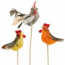 Haan met echte veren op de stok Oranje, geel, bruin assorti H5-6cm 12st