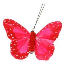 Veren vlinders op clip multicolour 7cm 12st